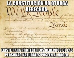 Constitucion Meme sobre derechos